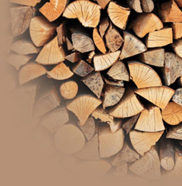 Choisir le bon bois